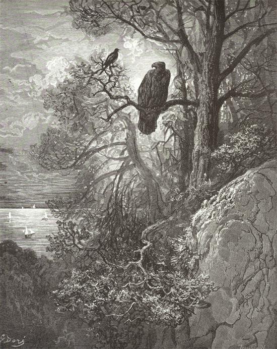The Eagle and the Magpie, Gustave Dore art print