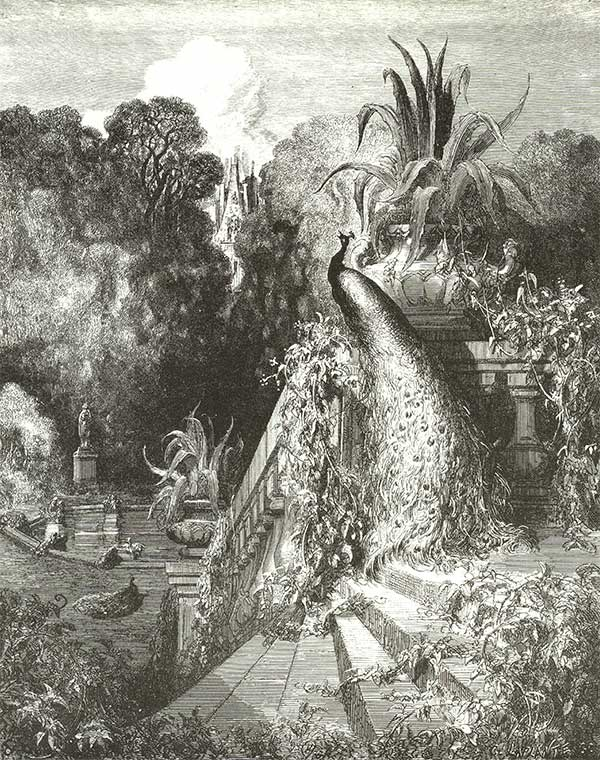 The Peacock Complaining to Juno. Gustave Dore art print