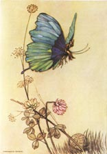 Warwick Goble, Hop o' My Thumb